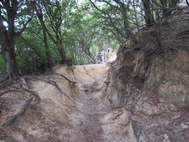 六甲山2012春(その1 芦屋川駅~風吹岩編) 風吹岩まで2
