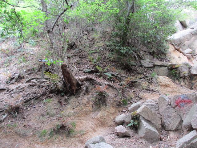 六甲山2012春(その1 芦屋川駅~風吹岩編) 風吹岩まで7