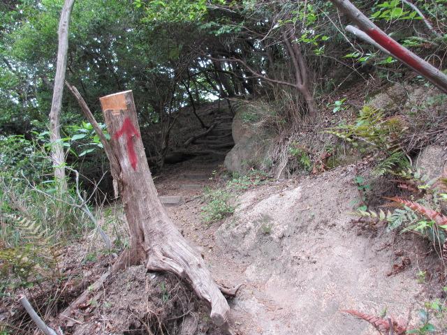 六甲山2012春(その1 芦屋川駅~風吹岩編) 風吹岩まで9