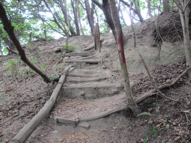 六甲山2012春(その1 芦屋川駅~風吹岩編) 風吹岩まで10