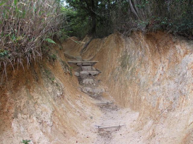 六甲山2012春(その1 芦屋川駅~風吹岩編) 風吹岩まで14