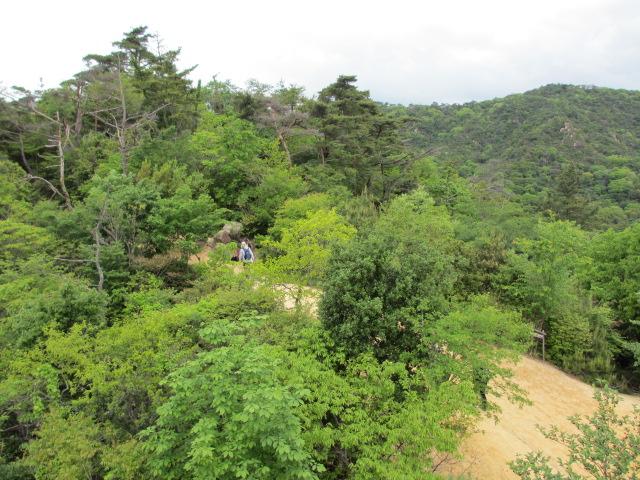 六甲山2012春(その1 芦屋川駅~風吹岩編) 風吹岩4