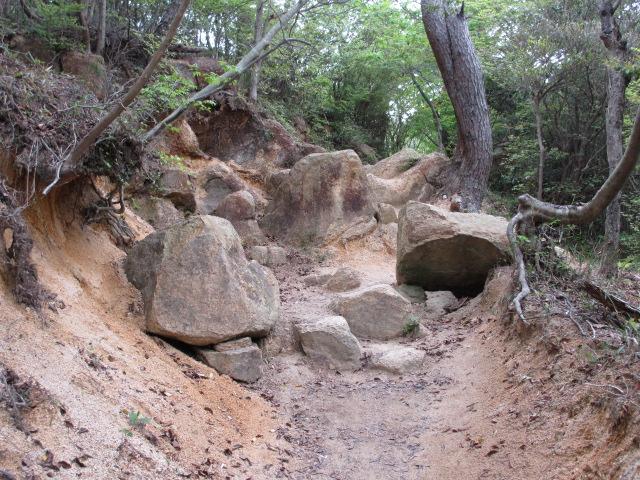 六甲山2012春(その2 風吹岩 ~最高峰編) 雨ケ峠まで2