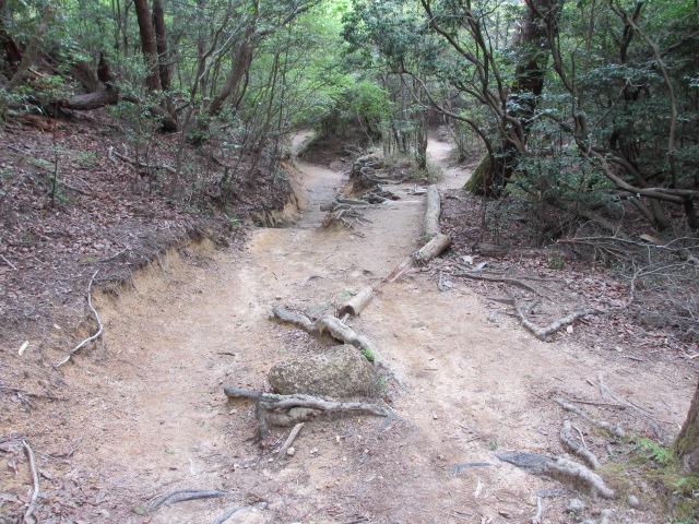 六甲山2012春(その2 風吹岩 ~最高峰編) 雨ケ峠まで3