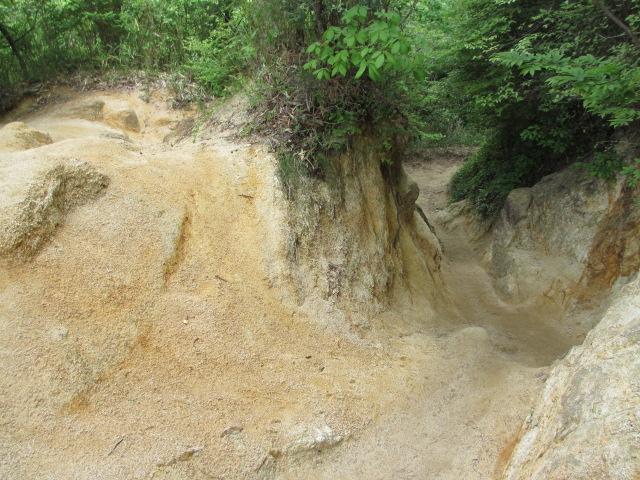 六甲山2012春(その2 風吹岩 ~最高峰編) 雨ケ峠まで8