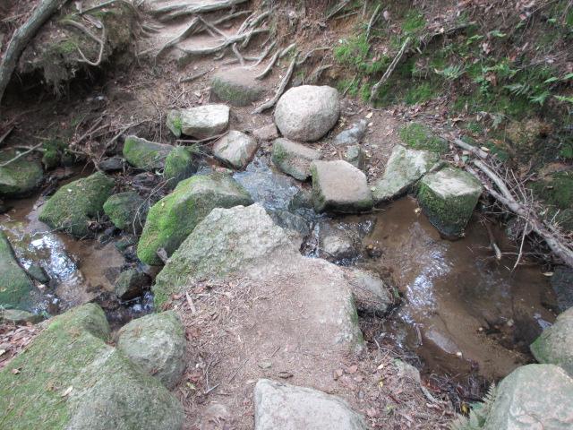 六甲山2012春(その2 風吹岩 ~最高峰編) 雨ケ峠まで11