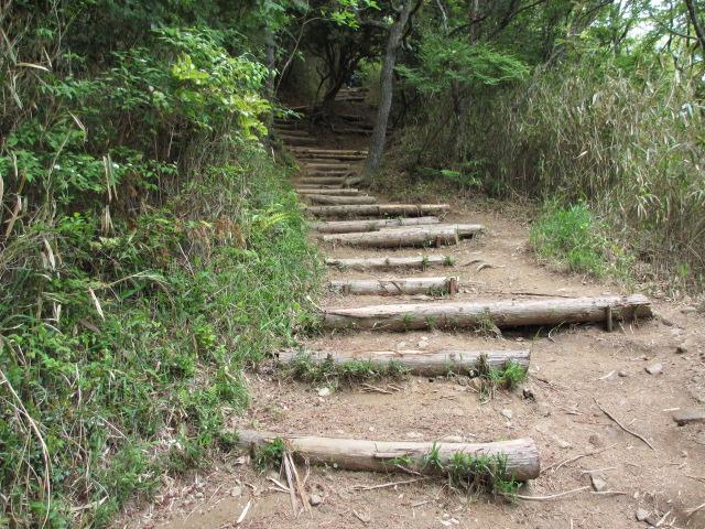 六甲山2012春(その2 風吹岩 ~最高峰編) 雨ケ峠まで24