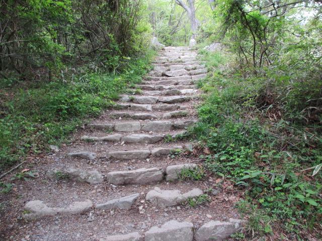 六甲山2012春(その2 風吹岩 ~最高峰編) 本庄橋跡・七曲り分岐点まで9