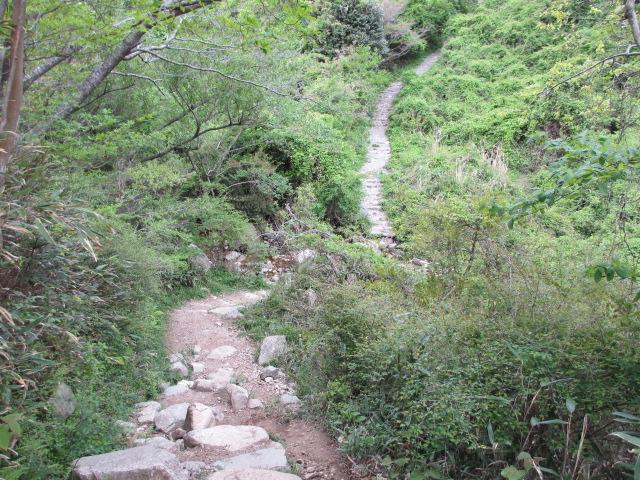 六甲山2012春(その2 風吹岩 ~最高峰編) 一軒茶屋まで
