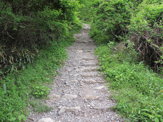 六甲山2012春(その2 風吹岩 ~最高峰編) 一軒茶屋まで3