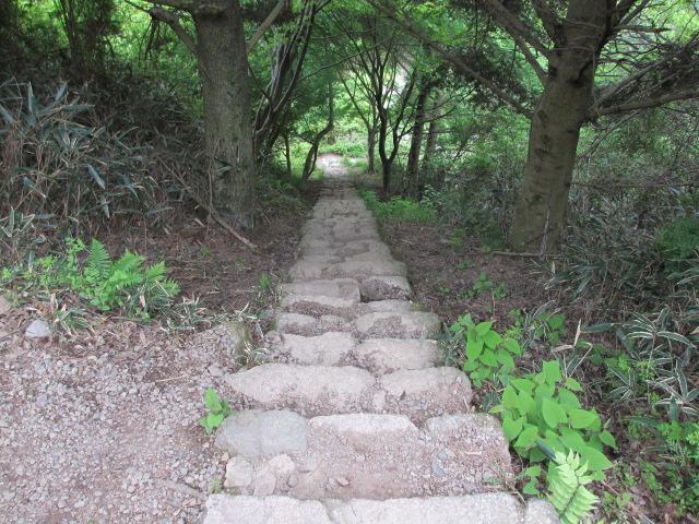 六甲山2012春(その2 風吹岩 ~最高峰編) 一軒茶屋まで5