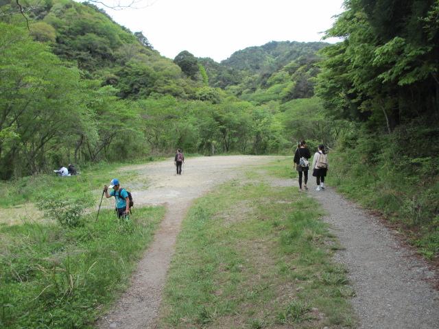 六甲山2012春(その2 風吹岩 ~最高峰編) 一軒茶屋まで7