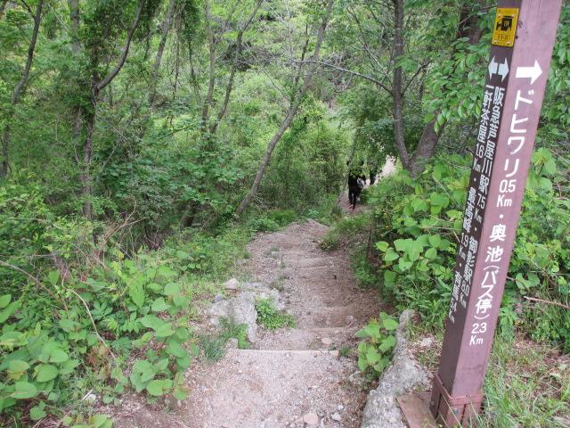 六甲山2012春(その2 風吹岩 ~最高峰編) 一軒茶屋まで8