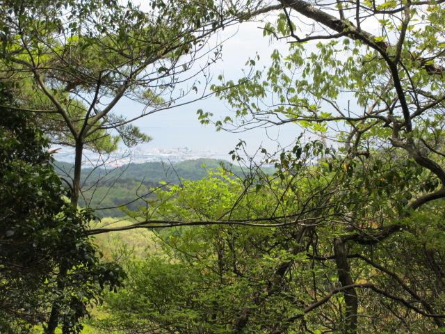 六甲山2012春(その2 風吹岩 ~最高峰編) 一軒茶屋まで15