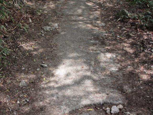 六甲山2012春(その2 風吹岩 ~最高峰編) 一軒茶屋まで17