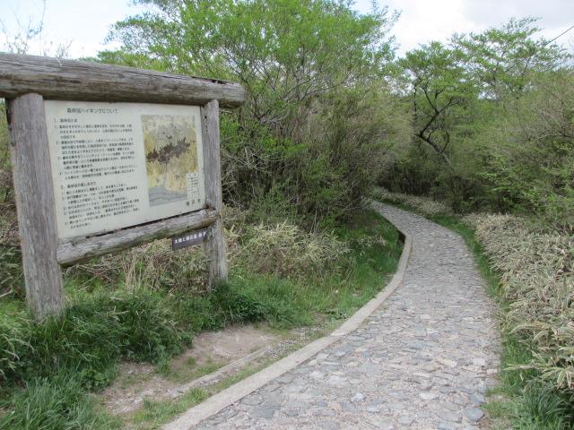 六甲山2012春(その3 最高峰~有馬温泉編) 有馬稲荷神社近道まで