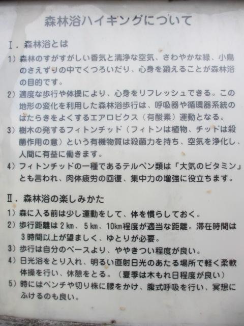 六甲山2012春(その3 最高峰~有馬温泉編) 有馬稲荷神社近道まで2