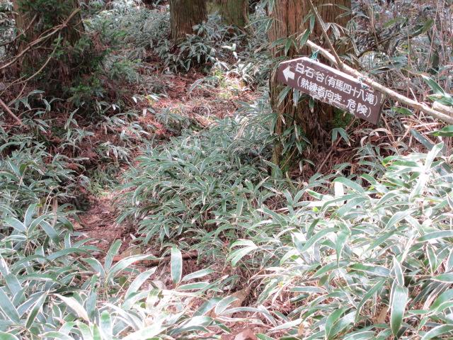 六甲山2012春(その3 最高峰~有馬温泉編) 有馬稲荷神社近道まで4