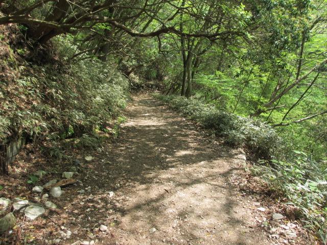 六甲山2012春(その3 最高峰~有馬温泉編) 有馬稲荷神社近道まで6