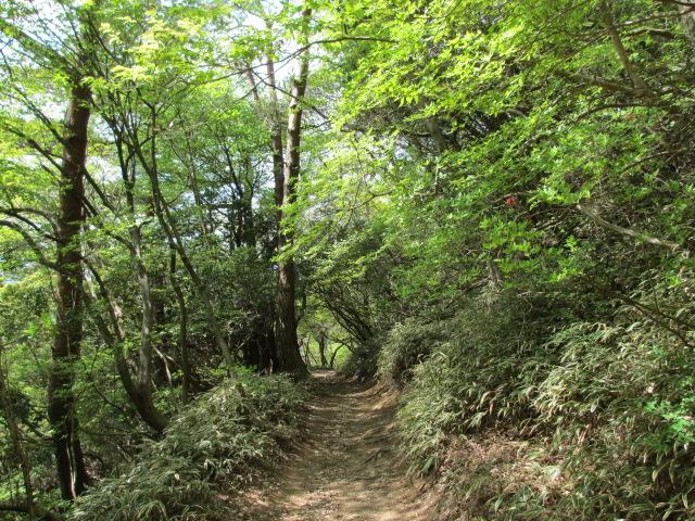 六甲山2012春(その3 最高峰~有馬温泉編) 有馬稲荷神社近道まで7