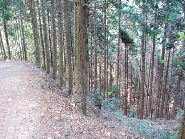 六甲山2012春(その3 最高峰~有馬温泉編) 有馬稲荷神社近道まで10