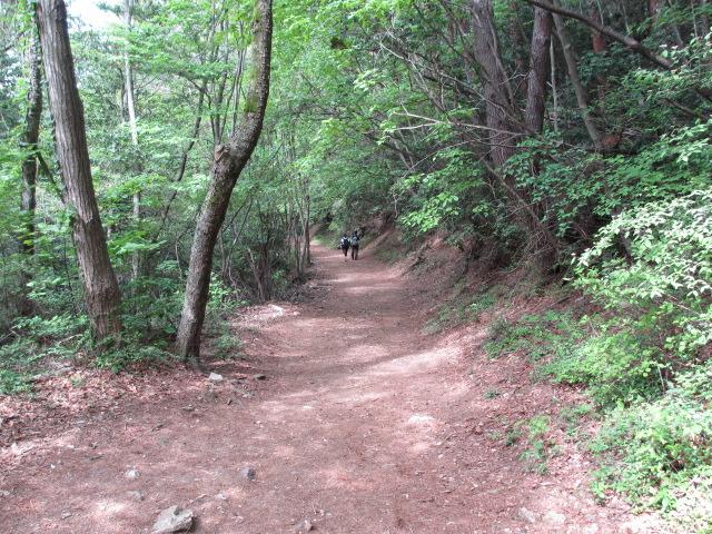 六甲山2012春(その3 最高峰~有馬温泉編) 有馬稲荷神社近道まで17