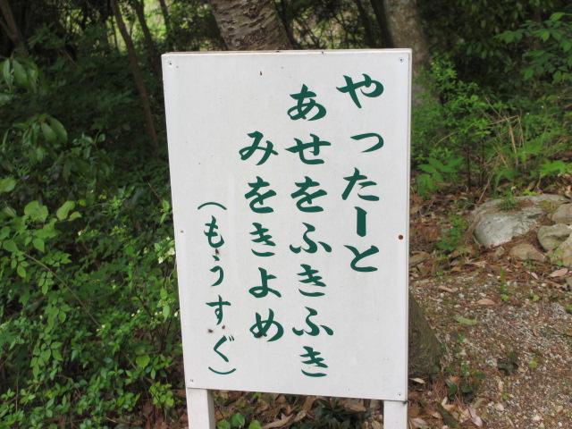 六甲山2012春(その3 最高峰~有馬温泉編) 有馬稲荷神社まで5