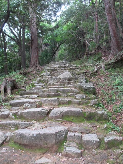 神倉神社 石段4