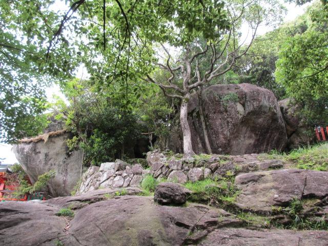 神倉神社 石段8