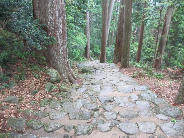 飛瀧神社へ5