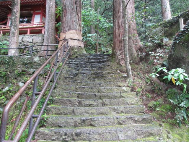 飛瀧神社17
