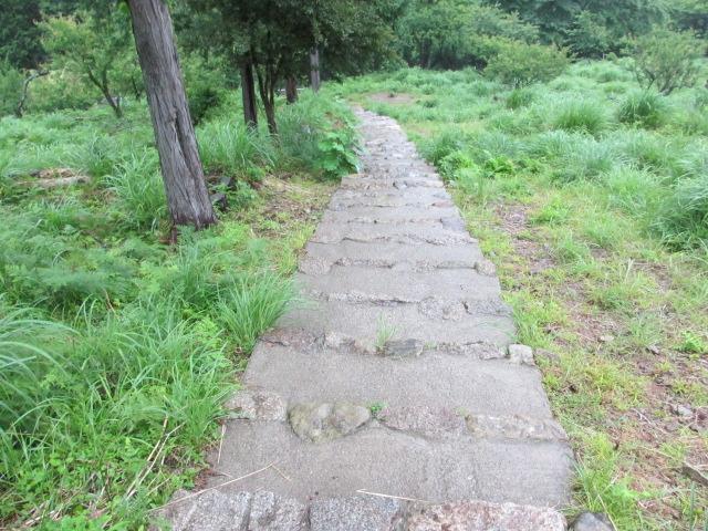 飛瀧神社から大門坂駐車場へ2