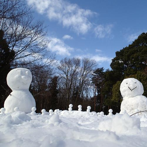 1402雪だるま_convert_20140209114517