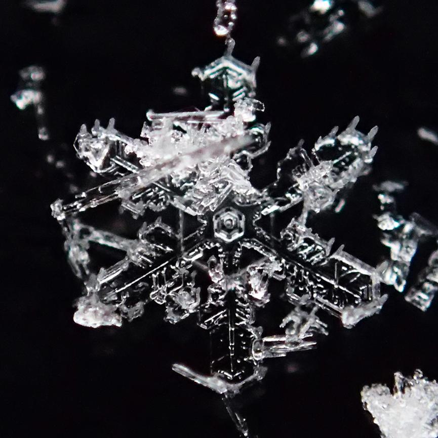 1402雪結晶2