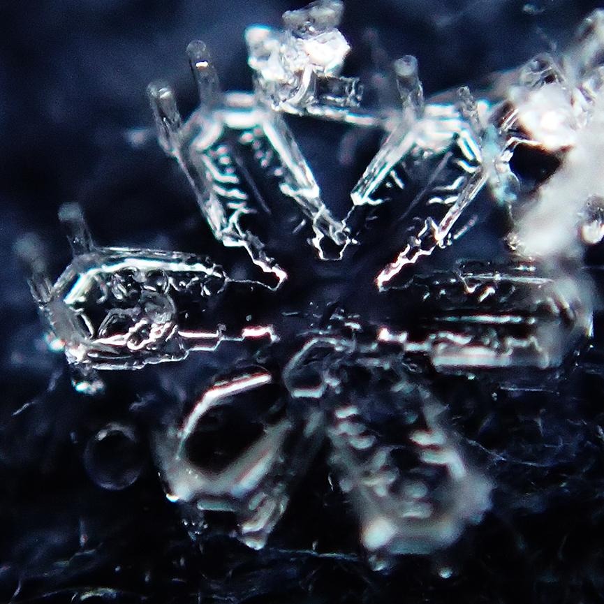 1402雪結晶5