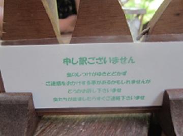 20120526203651616.jpg