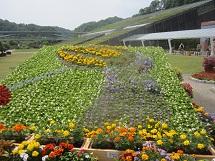 529 花フェスタ1 ブログ用