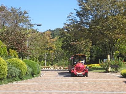 1019 花フェスタ公園 ブログ