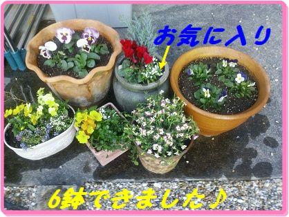 1030花1 ブログ