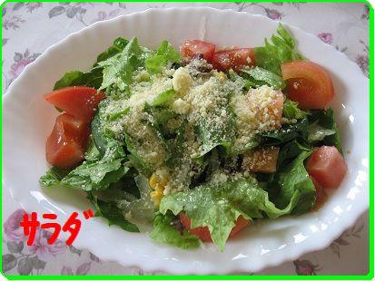 1206 サラダ ブログ