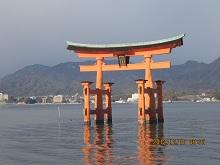1212 厳島神社鳥居2 ブログ