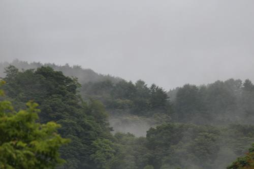 2012-7-3-4.jpg