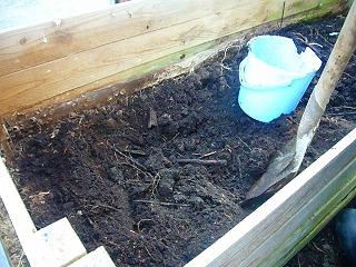 カブトムシ堆肥