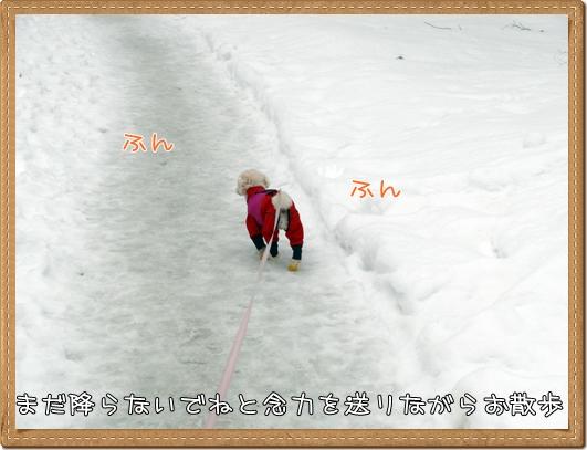 130307-1.jpg