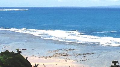 今日の土浜3
