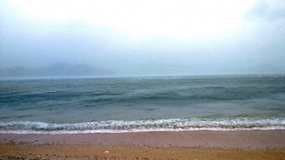 台風15号通過後2
