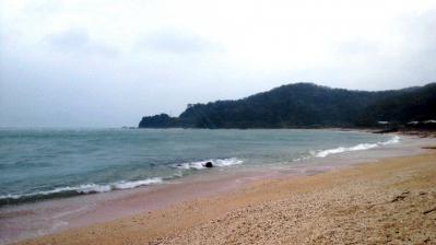 台風15号通過後3