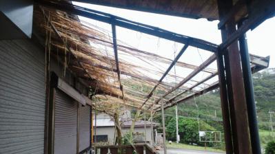 台風15号被害状況2