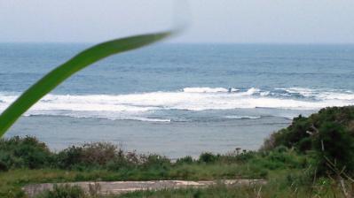 台風21号接近中3