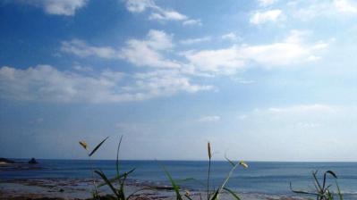 平穏な土浜2